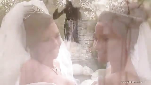 حفلة زفاف مثليات
